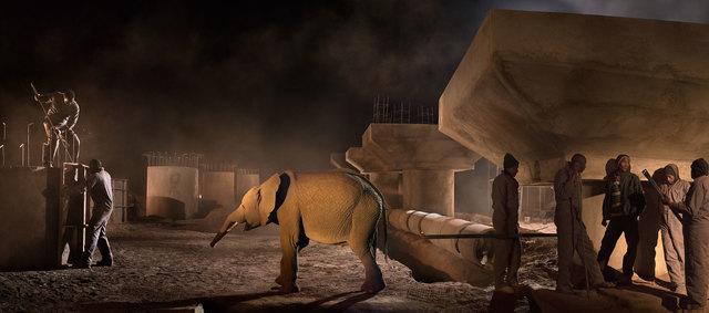 Nick Brandt, 'Bridge Construction with Terrified Elephant', 2018, Fahey/Klein Gallery