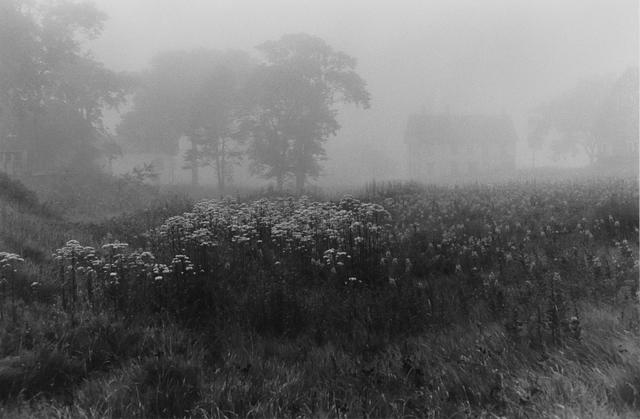 , 'Evening Fog, Jonesport, Maine,' 1971, Gallery 270