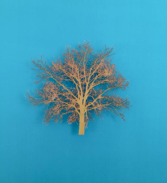 , 'Oak Tree 7,' 2015, Serena Morton