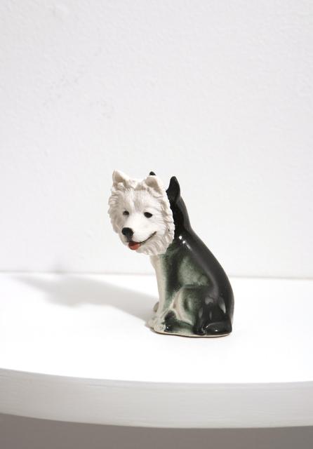 , 'Disguise Dog [Disfraz/Perro],' 2007, El Museo del Barrio