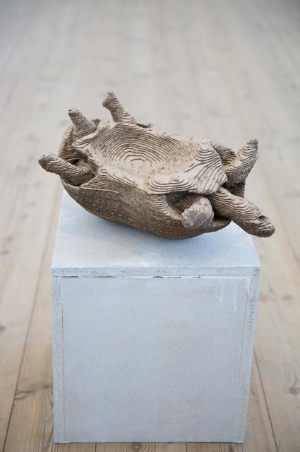 , 'Testudo Tabulata/Pyx,' 2015, Galleri Susanne Ottesen