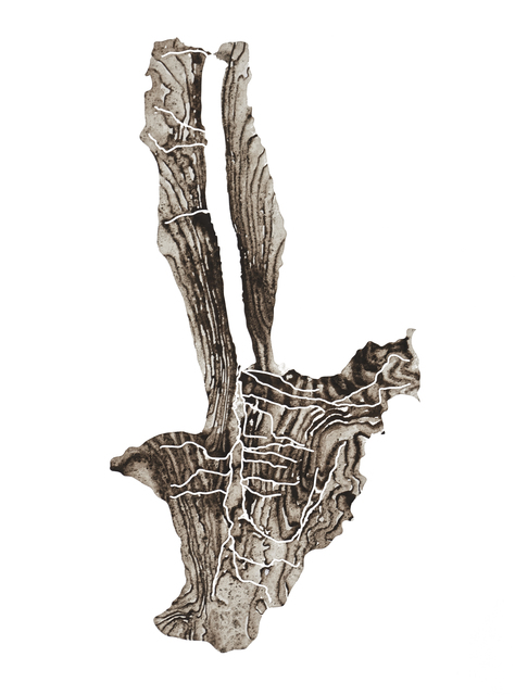 Lauren Rosenthal McManus, 'Hemlock Lake', 2017, Drawing, Collage or other Work on Paper, Ground rock, water, and gum arabic on paper, Garvey | Simon
