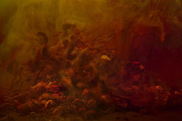 , 'Stamen Series,' 2010, Fahey/Klein Gallery
