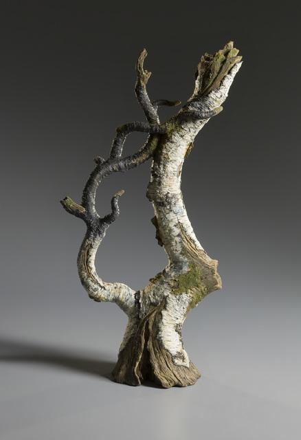 , 'Birch Bough Teapot,' 2016, Jason Jacques Gallery