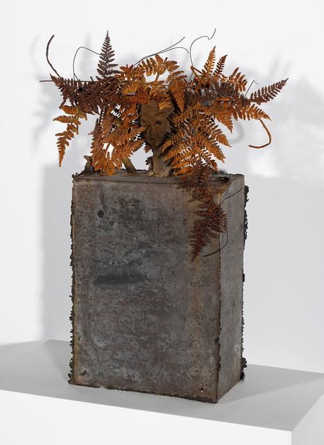 Manolo Valdés, 'Helechos', Rosenbaum Contemporary