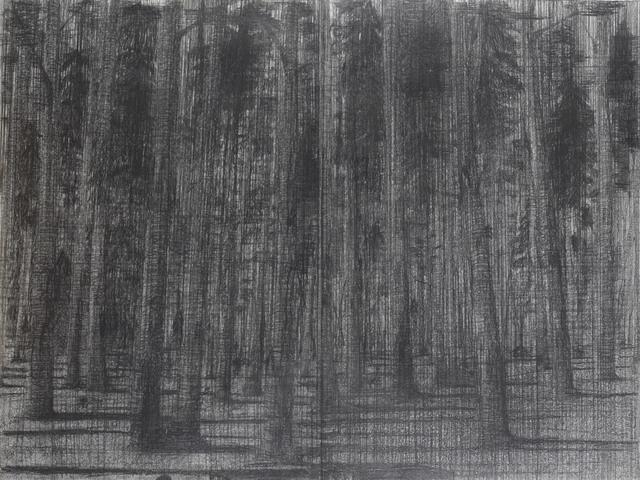 , 'Forêt, 2006-2007,' 2006-2007, Ditesheim & Maffei Fine Art