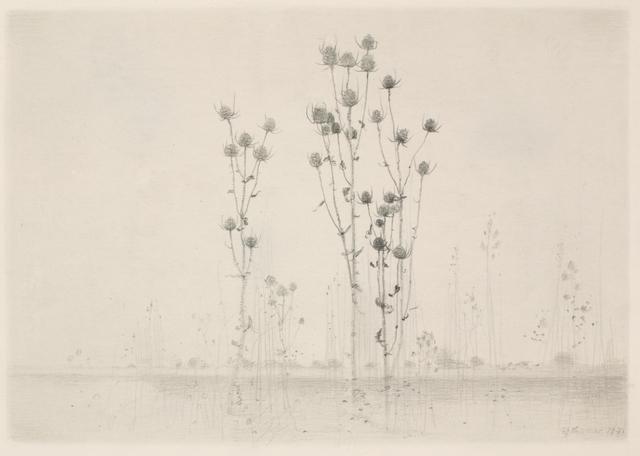 Gunnar Norrman, 'Dipsacus', Pucker Gallery