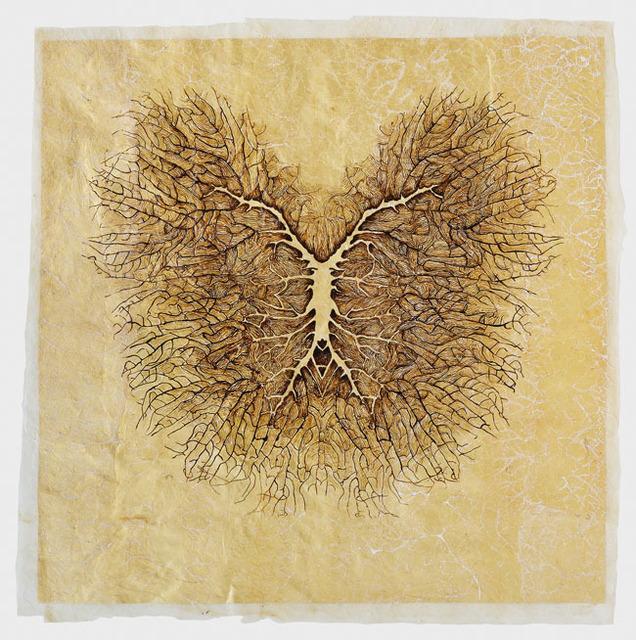 , 'Reticulae Natura X,' 2014, Mario Mauroner Contemporary Art Salzburg-Vienna
