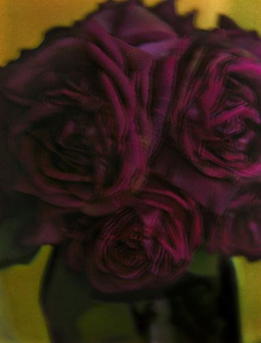 , 'Les Roses,' 1998, Peter Fetterman Gallery