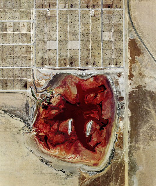 , 'Coronado Feeders, Dalhart, Texas,' 2013, Carroll / Fletcher