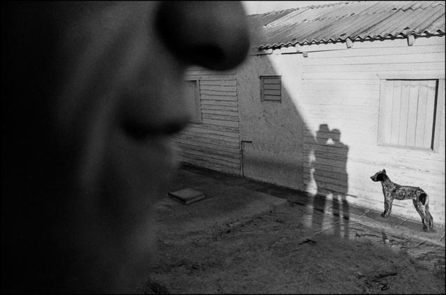 , 'Viñales, Cuba,' 2007, The Photographers' Gallery   Print Sales