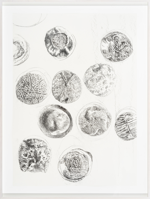 , 'Bioaesthetics II,' 2017, Temnikova & Kasela
