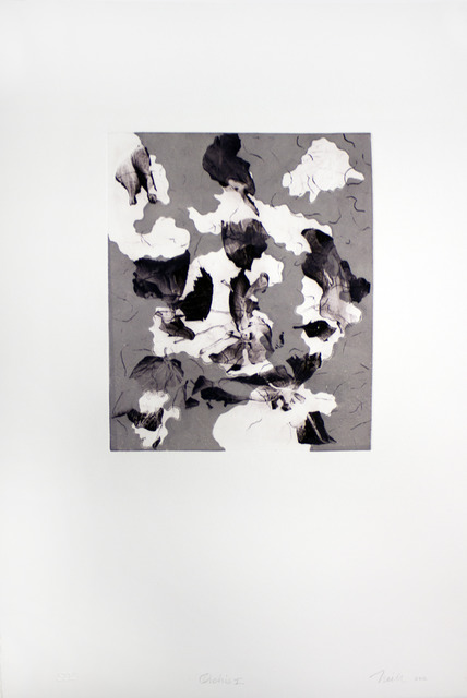 , 'Orchis I,' 2012, Goya Contemporary/Goya-Girl Press
