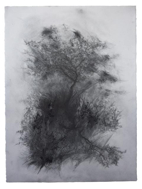 , 'Appearance,' 2018, LWM18