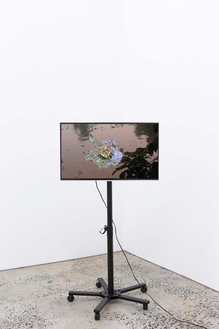 , 'vdVR fish,' 2017, ltd los angeles