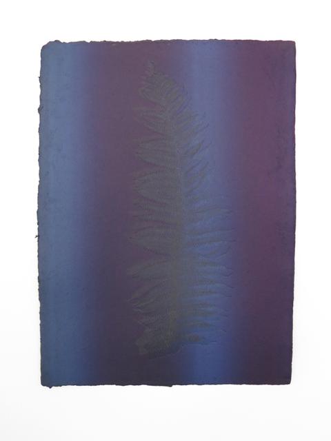 , 'Untitled (Fern Print),' 2014, RxArt