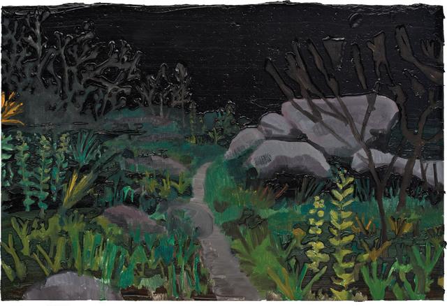 , 'Caminho no mato - noite americana,' 2016, SIM Galeria