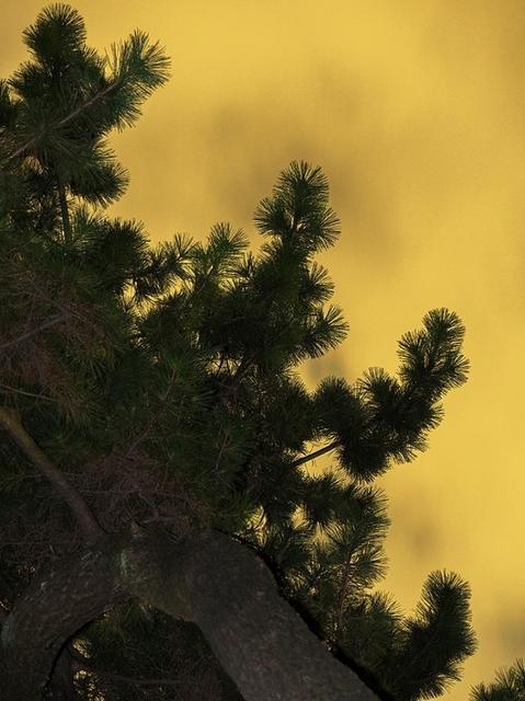 , 'Moon Light 004,' 2014, CHRISTOPHE GUYE GALERIE
