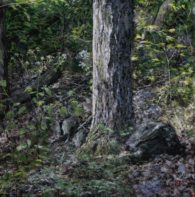 Jeff Gola, 'Norwottuck Forest, September', 2018, William Baczek Fine Arts