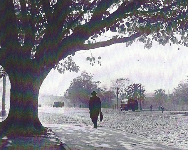 , 'Parque Dom Pedro,' 1949/1970, RocioSantaCruz