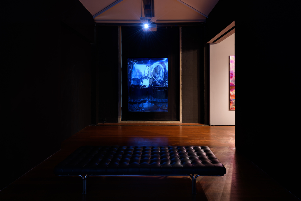 Exhibition view, Dale Frank, Roslyn Oxley9 Gallery, Sydney (13 June - 6 July 2019). Photo: Luis Power.