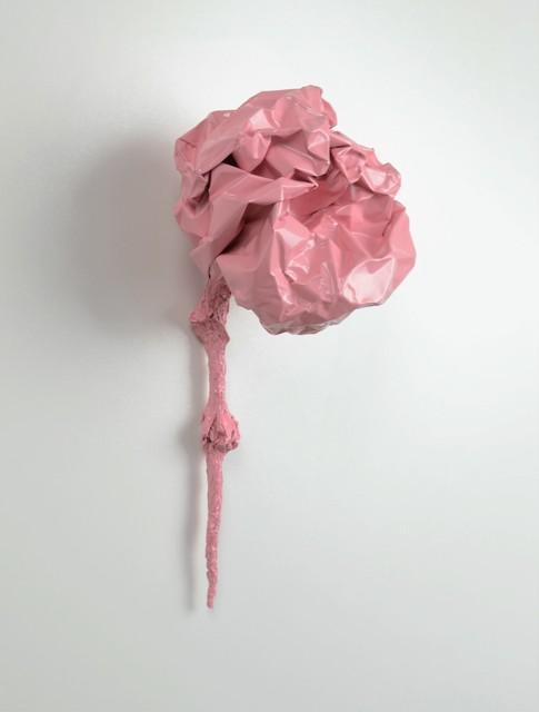 , 'Flora, Petal Pink,' , blankblank