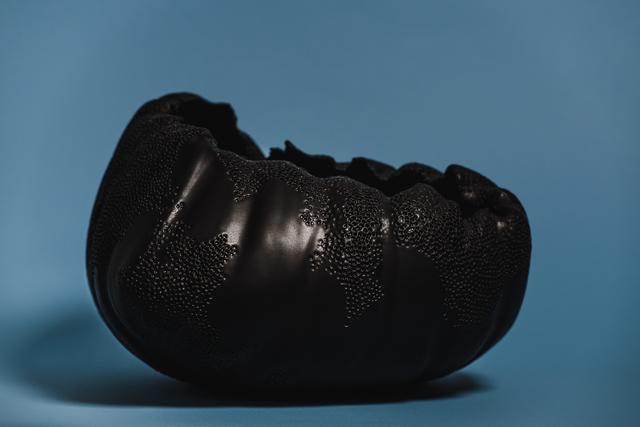 Irina Salmina, 'Black reptile shell', 2019, Kunzt Gallery