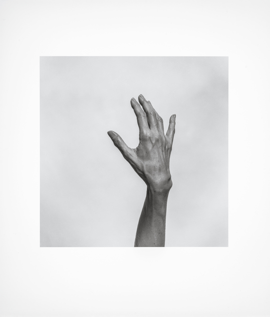 , 'Untitled (Hand),' 1997, Montreal Museum of Fine Arts