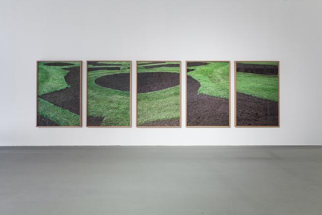 , 'Green Grass, Brown Soil,' 2013, Winston Wächter Fine Art
