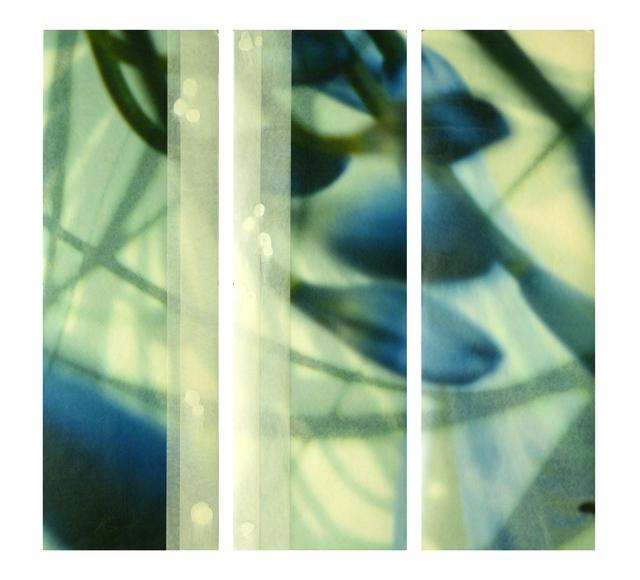 Jane Guthridge, 'The Space Between Triptych 21', Chicago Art Source