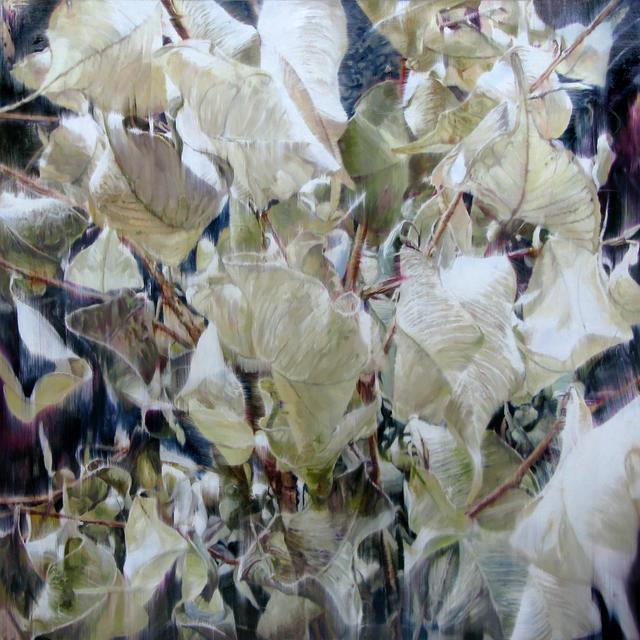 , 'Dry Plant-18023,' 2018, Gallery Baton