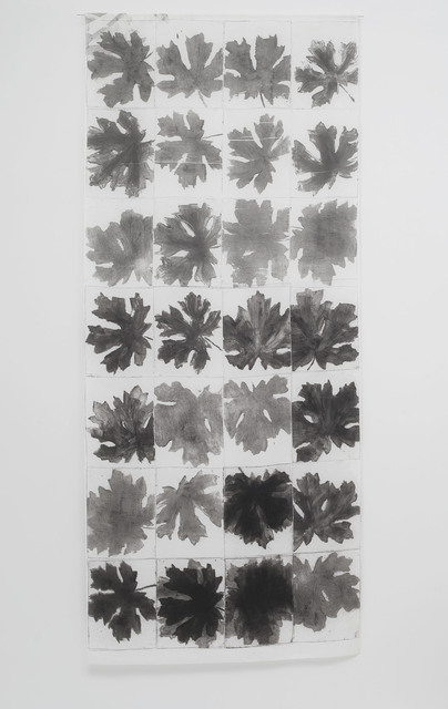 , 'Big Leaf Maple,' 2015, Seager Gray Gallery