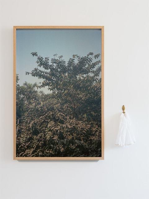 , 'Brown Snow,' 2018, Blindspot Gallery