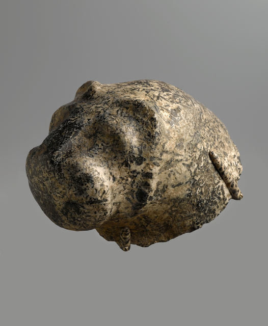 , 'Lion,' ca. 3300, Brooklyn Museum