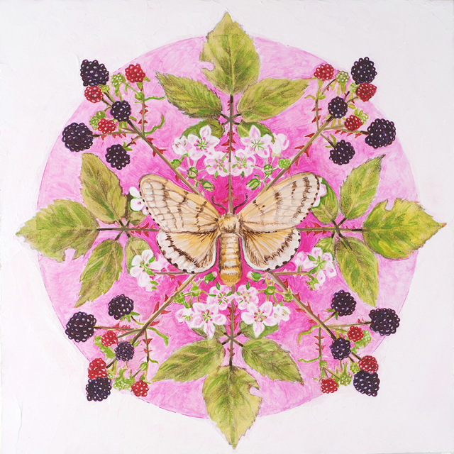 , 'Himalayan Blackberry, Gypsy Moth,' 2018, Linda Hodges Gallery