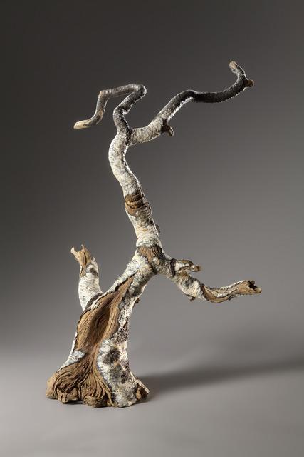 , 'Bonsai Birch Teapot,' 2014, Jason Jacques Gallery