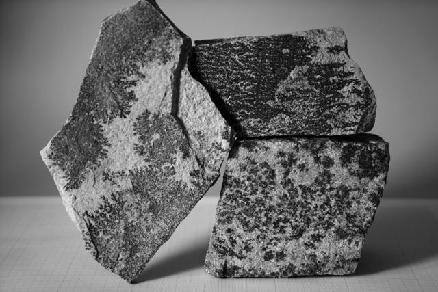 , 'Fishhooks-24, Dendrites,' 2014, Phosphorus & Carbon