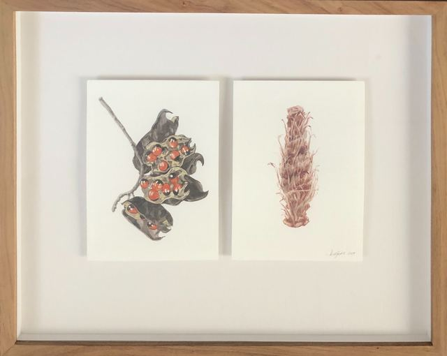 Isabella Kuijers, 'Objects Out of Context iii', 2019, Drawing, Collage or other Work on Paper, Watercolour and pencil on paper, 99 Loop Gallery