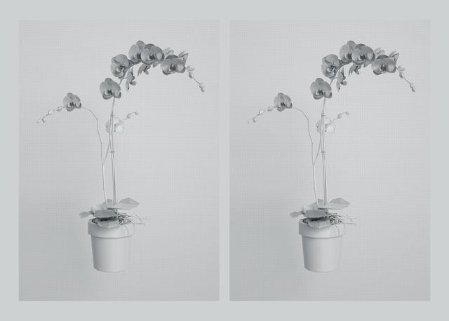 Kerem Ozan Bayraktar, 'Twins', 2019, Sanatorium