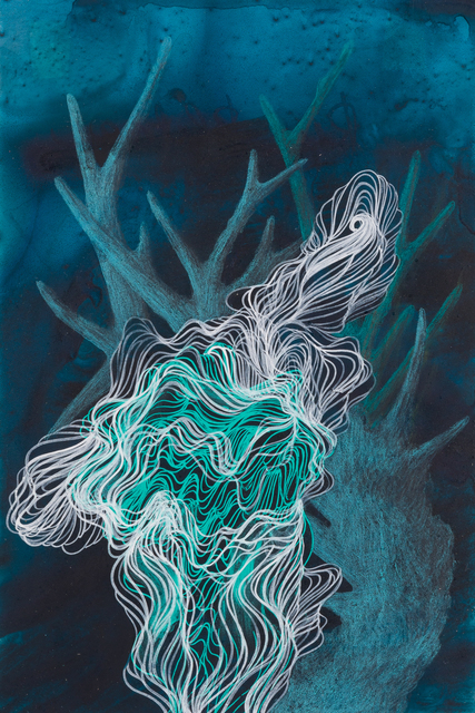 , 'Small Coral Drawing 24,' 2018, Childs Gallery