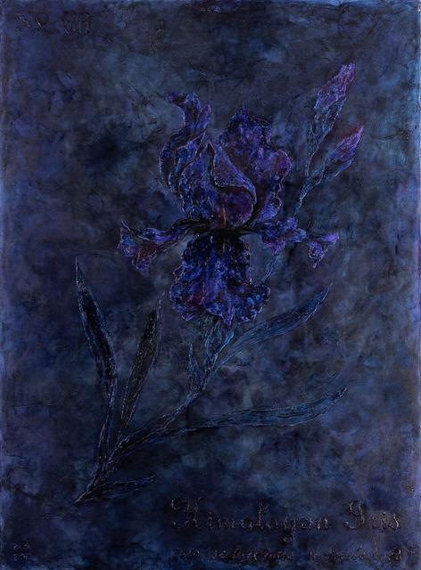 , 'Himalayan Iris,' 2016-2017, Exhibit 320
