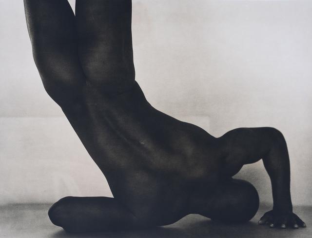 John Casado, 'Untitled 20258', 2002, Photography, Lith silver gelatin print, Andra Norris Gallery
