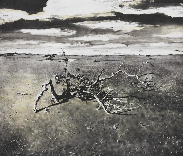 , 'Tree Ka'u Dessert ,' 2017, Rabley Contemporary