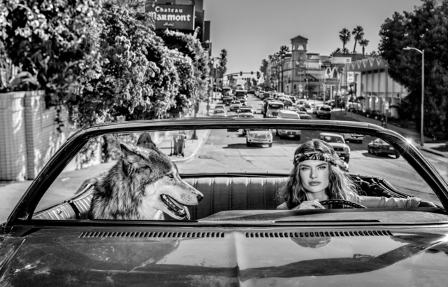 David Yarrow, 'Chateau Marmont', 2019, Holden Luntz Gallery