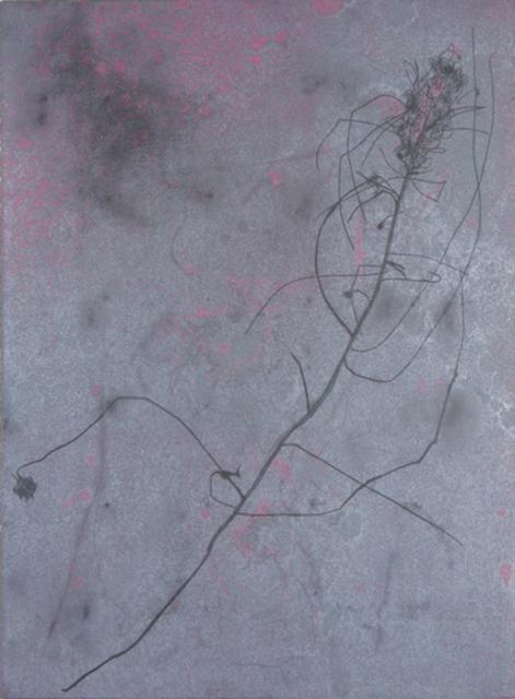 , 'Walks in a Dry Season 2,' , Chicago Art Source