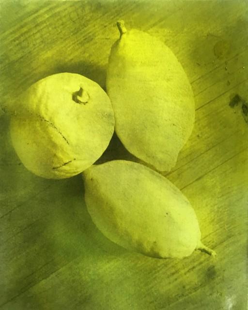 , 'Citrons,' 2018, Galerie Arcturus