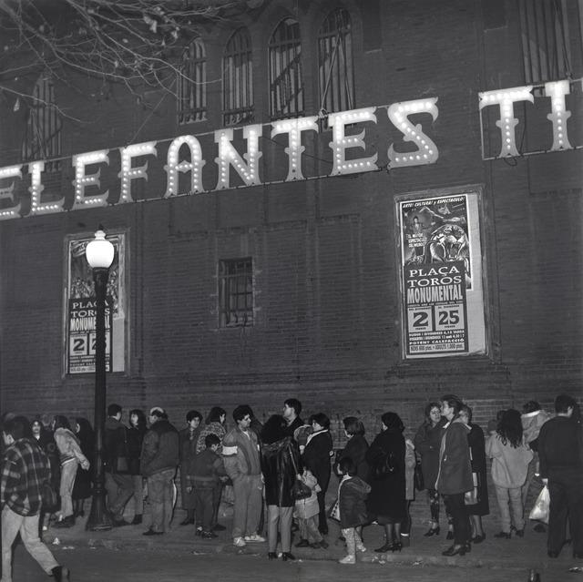 Craigie Horsfield, 'Plaça de Toros la Monumental, Gran Via de les Corts Catalanes, Barcelona, February 1996', 1996, The Merchant House