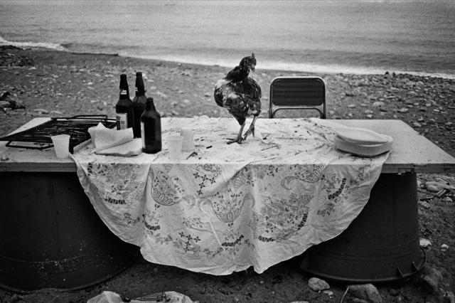 , 'Palermo,' 1986, ILEX Gallery