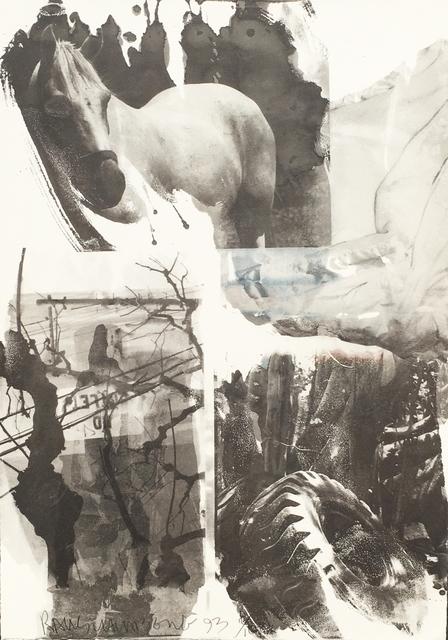 , 'Horse Silk (Deluxe Edition),' 1993, Eckert Fine Art