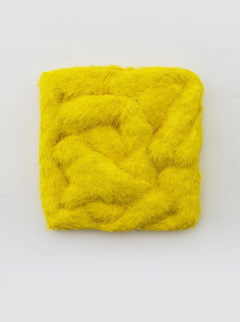 , 'Pelage No.7 皮毛 - 7, ,' 2016, Chambers Fine Art